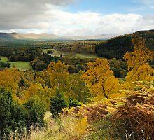 Cairngorms National Park by Mirka Rueda Rodriguez