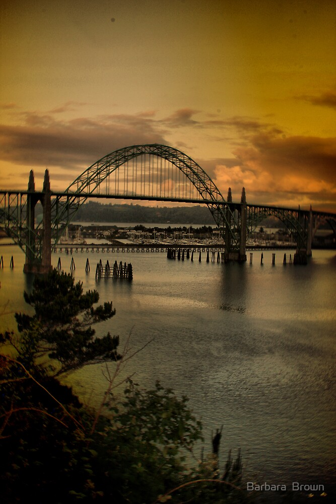 Bridge over the Bay by Barbara  Brown