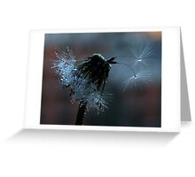 Glistening by Twilight Greeting Card