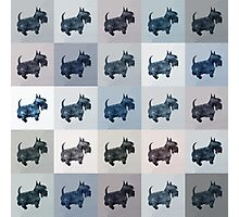Fifty Shades of Grey Scottie Dogs (25 shades actually) Photographic Print