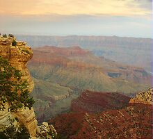 Grand Canyon by Aurobindo Saha