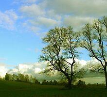Nubes de una tarde... by cieloverde