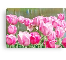 Pink tulips at the Keukenhof - Netherlands Canvas Print