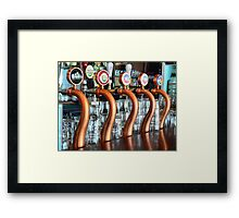 Snaking through Durty Nelly's Framed Print