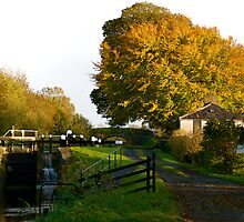 Autumn Canal Cottage, Ireland by Aishling O'Neill