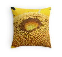 The details Throw Pillow