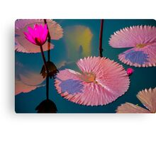 Lily Leaves Canvas Print