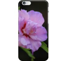 The Flowers at Coughton Court iPhone Case/Skin