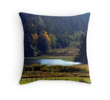 Headwaters of Lake Campbell Throw Pillow