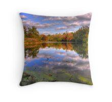 Willow Pond - Cherokee Park Throw Pillow
