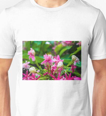 Quisqualis indica (Rangoon Creeper) Unisex T-Shirt
