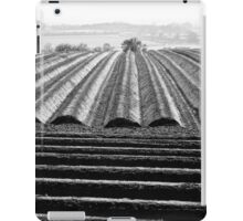Ploughed Field 01 (Northamptonshire) iPad Case/Skin