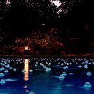 Bubbles by bigjason56