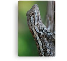 Scaled Beauty Canvas Print