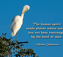 The human spirit and nature . . . by Bonnie T.  Barry