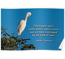 The human spirit and nature . . . Poster