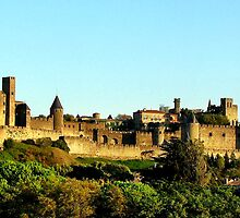 Magnificent Carcassonne by hans p olsen