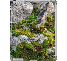 Around the Rugged Rocks the Ragged Moss ran,,,,, iPad Case/Skin