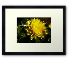 Perfection in Yellow Framed Print