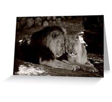 VALENTINE LIONS Greeting Card