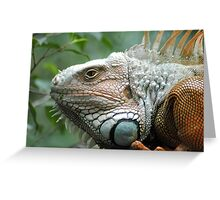 Close to the Iguana Greeting Card