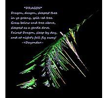 Sleeping Dragon Photographic Print