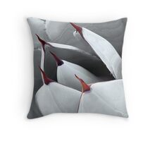 Points of View Throw Pillow