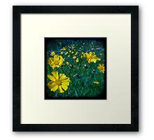 Flowers.Series 1 Framed Print