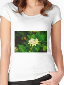 Tiny white flowers Women's Fitted Scoop T-Shirt
