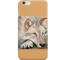 silent desert iPhone Case/Skin