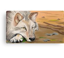 silent desert Canvas Print