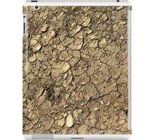 Dried Mud iPad Case/Skin