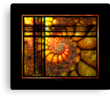 .. one Night as I looked Outside ... Canvas Print