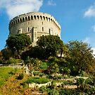 Windsor Castle by Stephie Butler