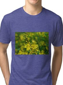 Yellow & Green Tri-blend T-Shirt