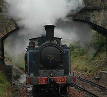Maude approaching Birkhill Station by Jackie Wilson