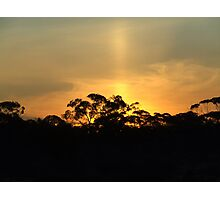 Mallee Sunset Photographic Print
