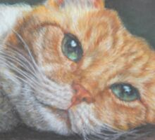 Cat Art - Orange Tabby Cat - Do not disturb me, please Sticker