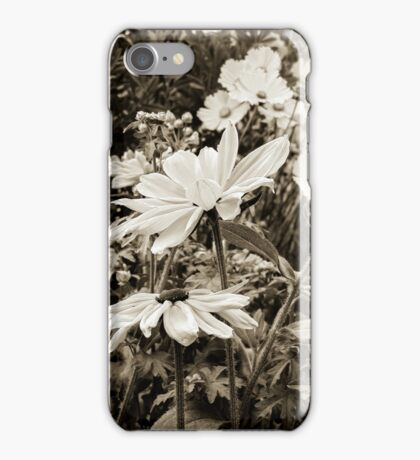 Nantucket Gardens V iPhone Case/Skin