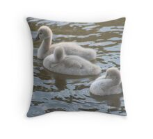 Ugly 'ducklings' Throw Pillow