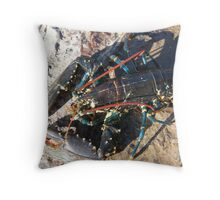 Live Lobster Throw Pillow