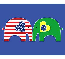 U.S.-Brazil Friendship Elephants Photographic Print