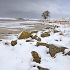 Lochindorb - Winter's Shoreline by Kevin Skinner