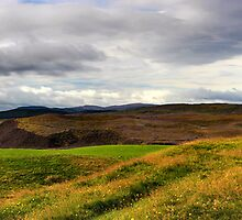 Dava Croft - View To The Cairngorms by Kevin Skinner