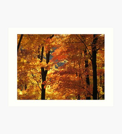 Flaming Autumn Forest Art Print