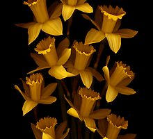 Dark Daffodils by Marsha Tudor