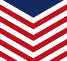 Go USA Sticker