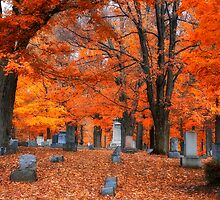 Cemetery Color by LocustFurnace