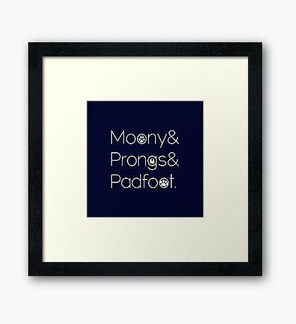 Moony & Pongs & Padfoot Framed Print