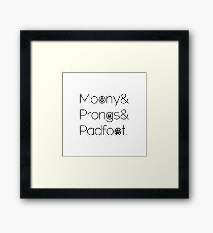 Marauders& Framed Print